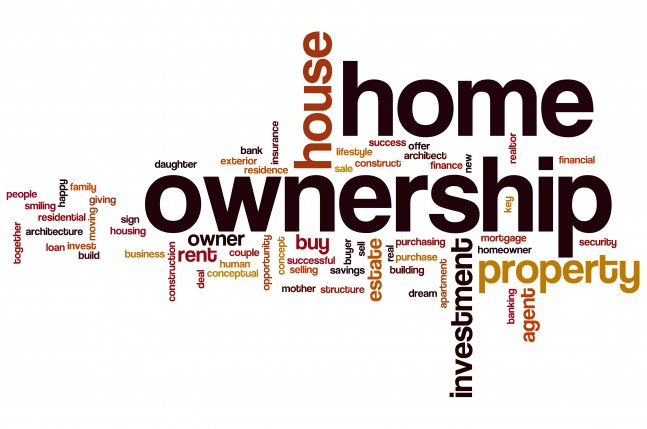 Purchasing a Company Title, Cross Lease or Moiety Title